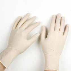 Latex Gloves (Powder Free)